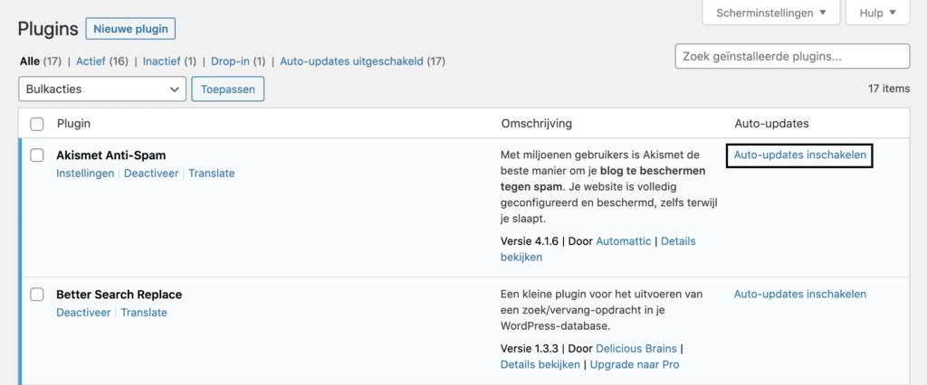 wordpress plugin automatische updates